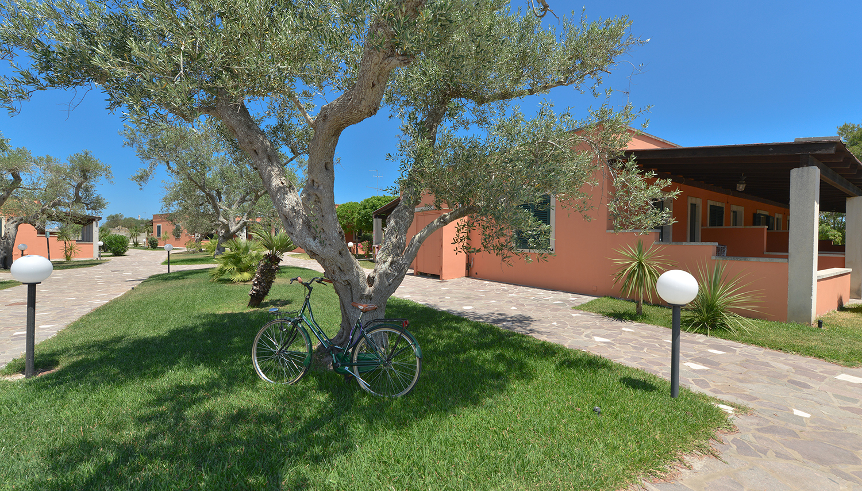 Mulino A Vento viešbutis (Apulija, Italija)