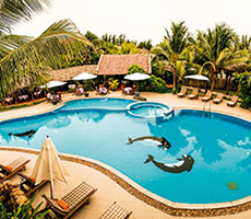 TTC Resort Premium Ke Ga гостиница (Хошимин, Вьетнам)